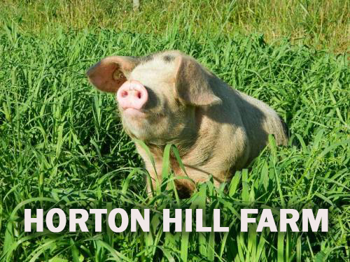 Horton Hill Farm