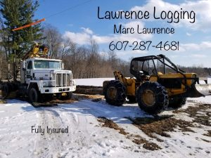 Marc Lawrence Logging