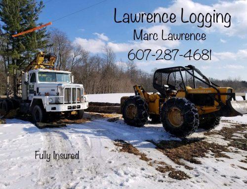 Marc Lawrence Logging
